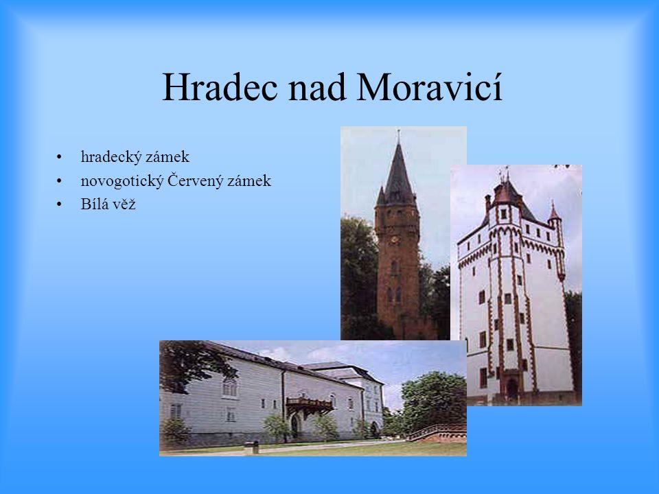 Hradec nad Moravicí hradecký zámek novogotický Červený zámek Bílá věž