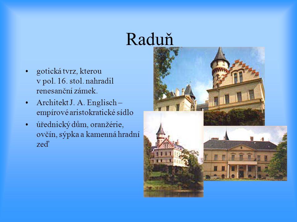 Raduň gotická tvrz, kterou v pol. 16. stol. nahradil renesanční zámek.
