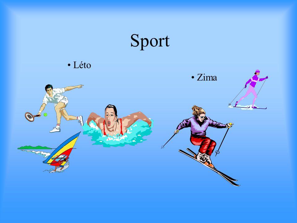 Sport Léto Zima