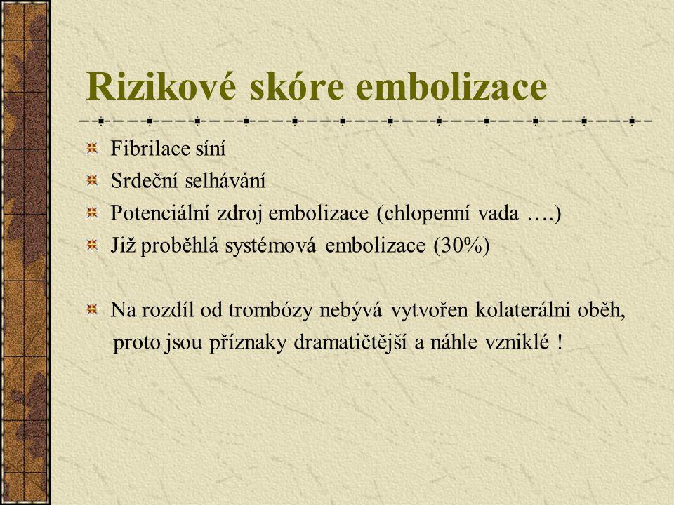 Rizikové skóre embolizace