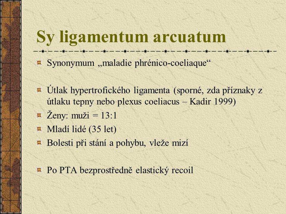 Sy ligamentum arcuatum