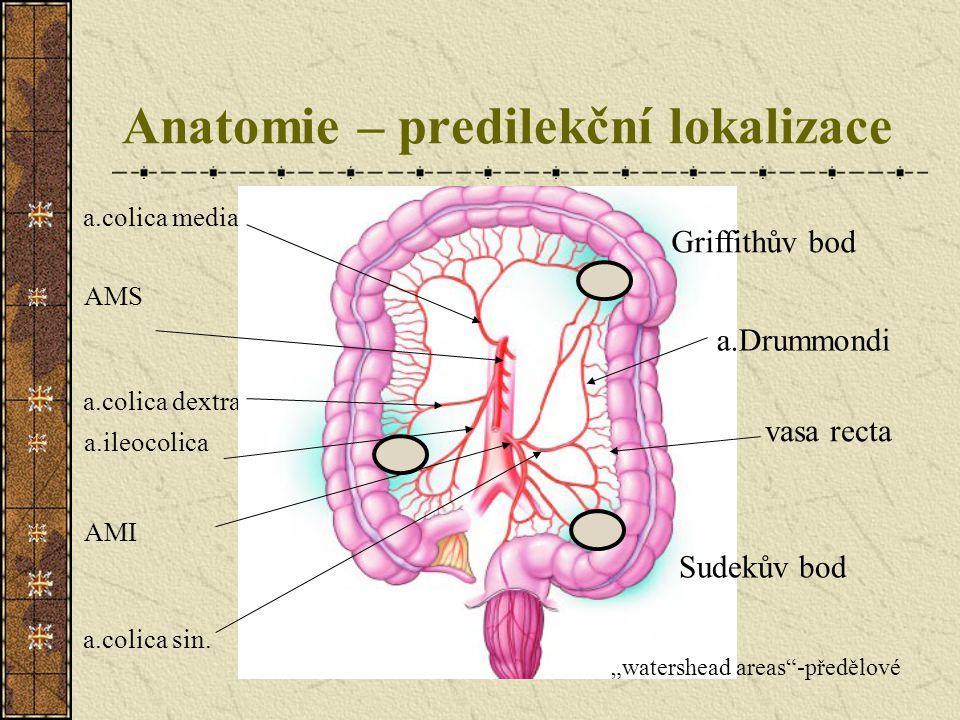 Anatomie – predilekční lokalizace