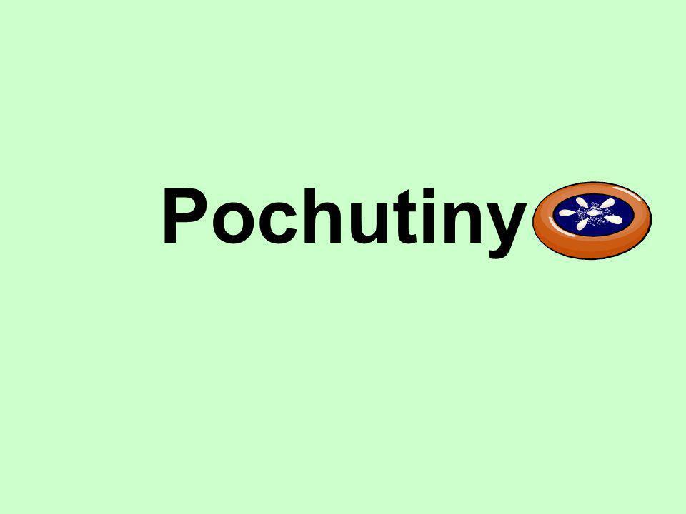 Pochutiny