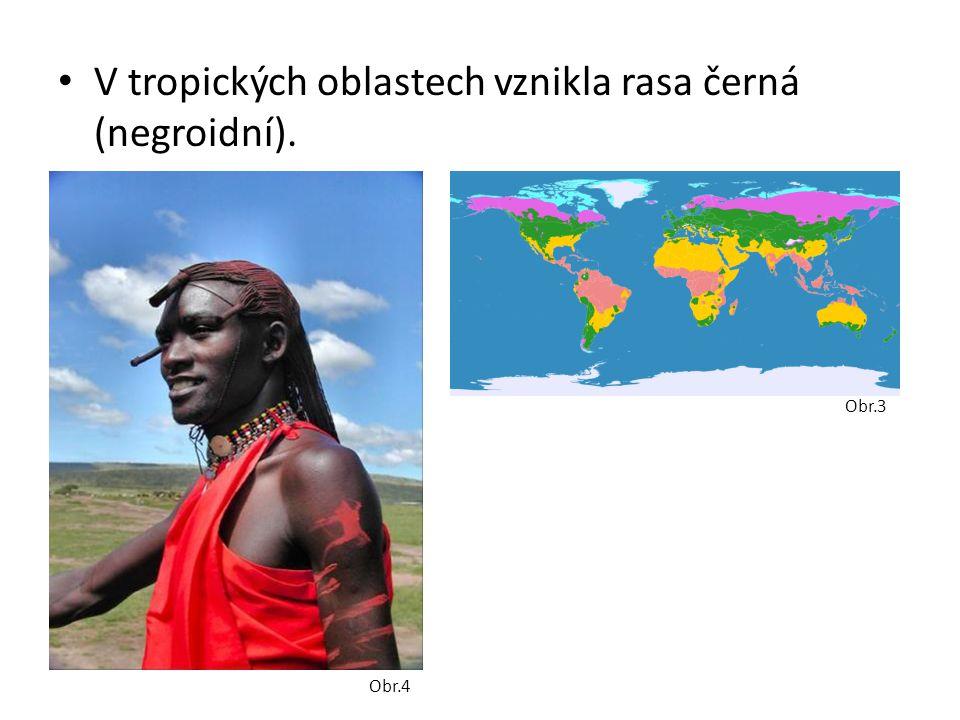 V tropických oblastech vznikla rasa černá (negroidní).