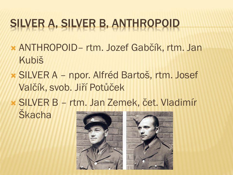 Silver A, silver B, anthropoid