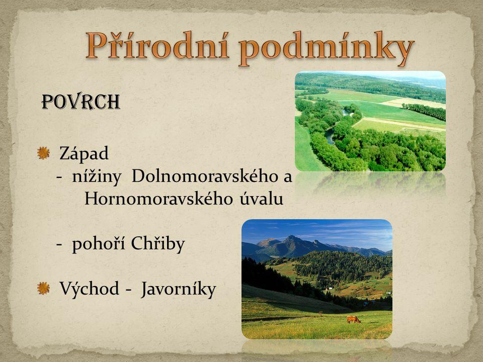 Přírodní podmínky POVRCH Západ - nížiny Dolnomoravského a