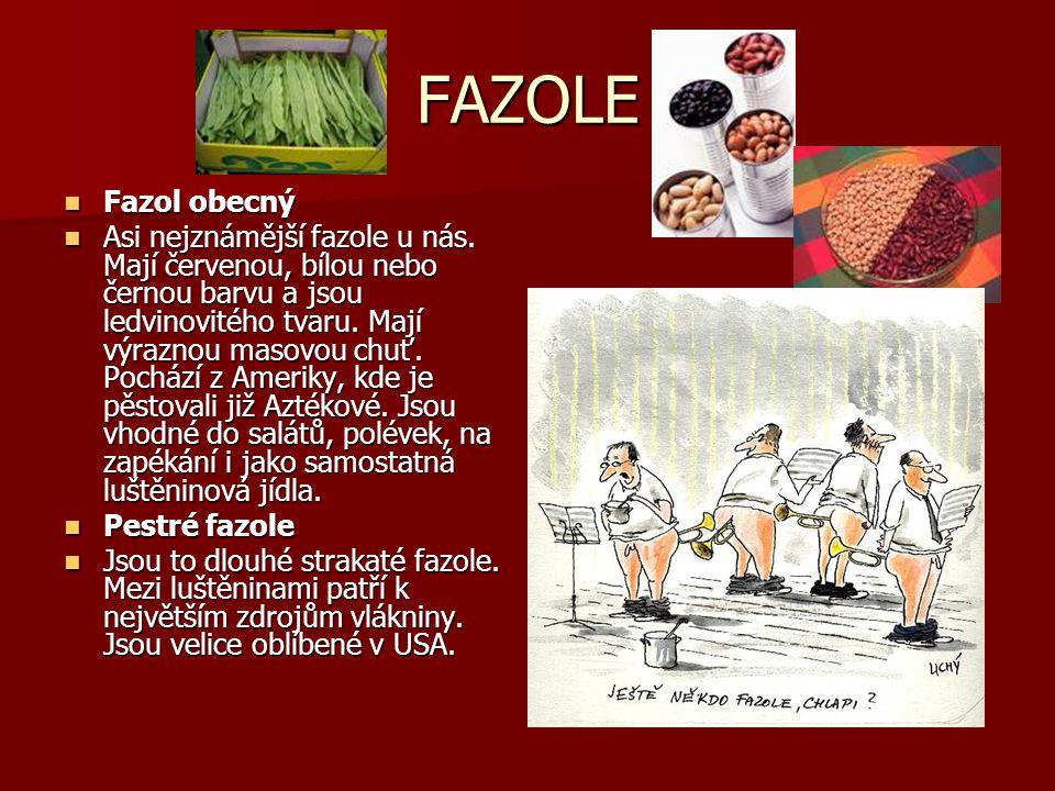 FAZOLE Fazol obecný.