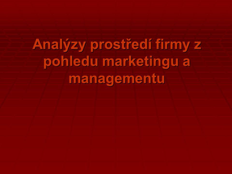 Analýzy prostředí firmy z pohledu marketingu a managementu
