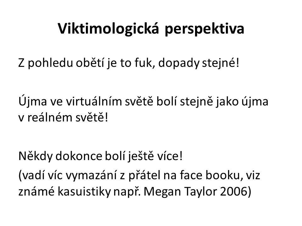 Viktimologická perspektiva