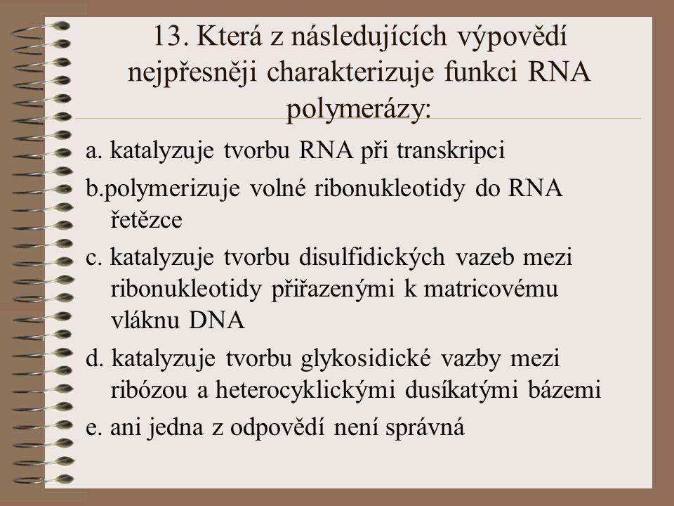 13. Která z následujících výpovědí nejpřesněji charakterizuje funkci RNA polymerázy: