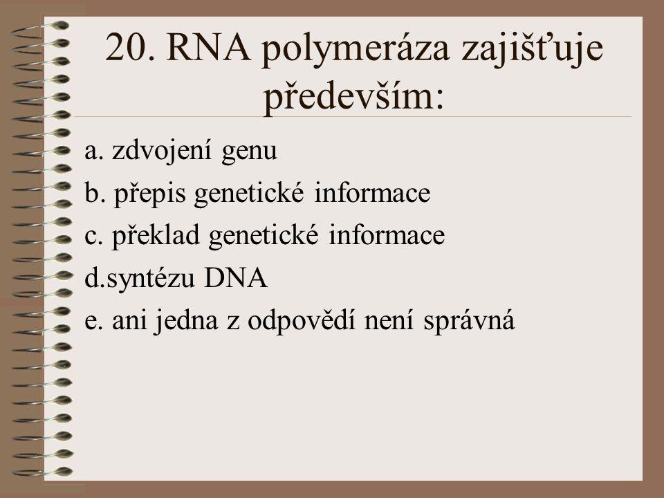 20. RNA polymeráza zajišťuje především: