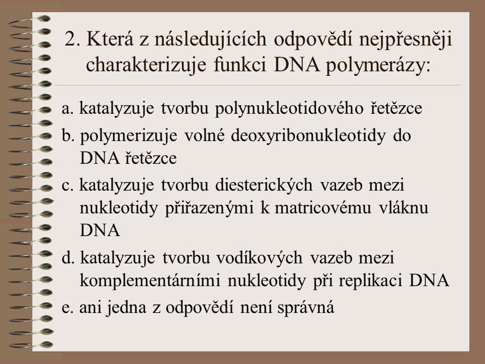 2. Která z následujících odpovědí nejpřesněji charakterizuje funkci DNA polymerázy: