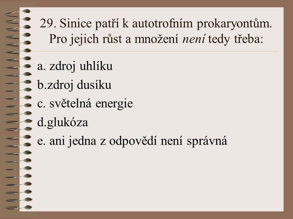 29. Sinice patří k autotrofním prokaryontům