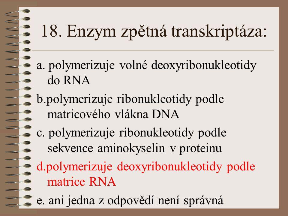 18. Enzym zpětná transkriptáza: