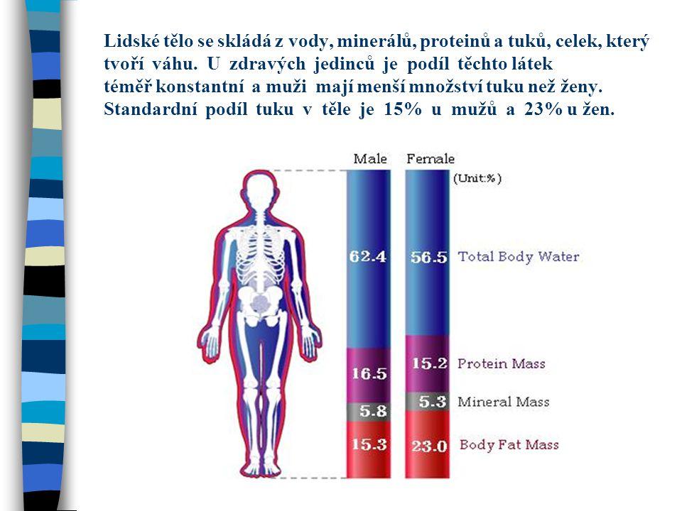 Lidské tělo se skládá z vody, minerálů, proteinů a tuků, celek, který tvoří váhu.