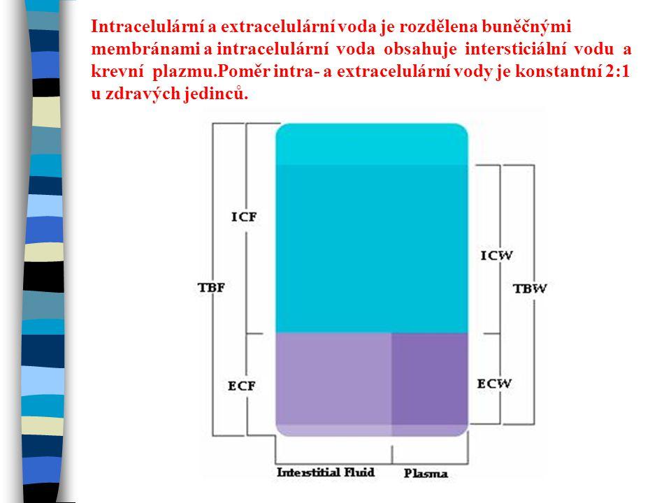Intracelulární a extracelulární voda je rozdělena buněčnými membránami a intracelulární voda obsahuje intersticiální vodu a krevní plazmu.Poměr intra- a extracelulární vody je konstantní 2:1 u zdravých jedinců.