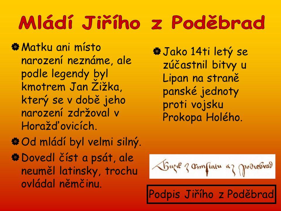 Mládí Jiřího z Poděbrad