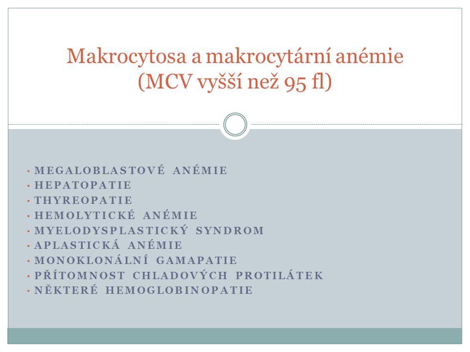 Makrocytosa a makrocytární anémie (MCV vyšší než 95 fl)