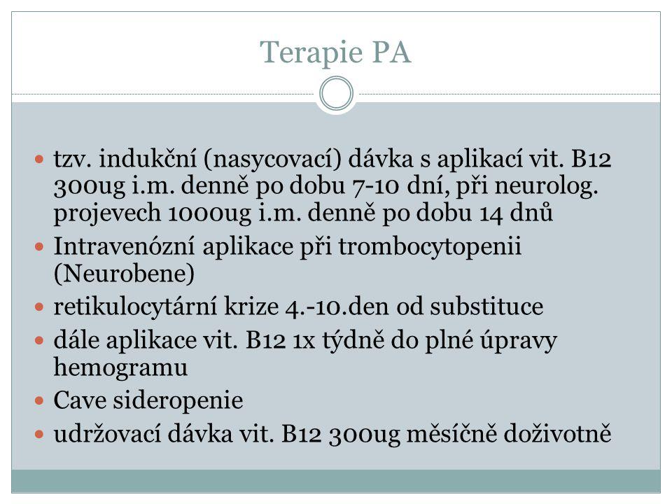 Terapie PA