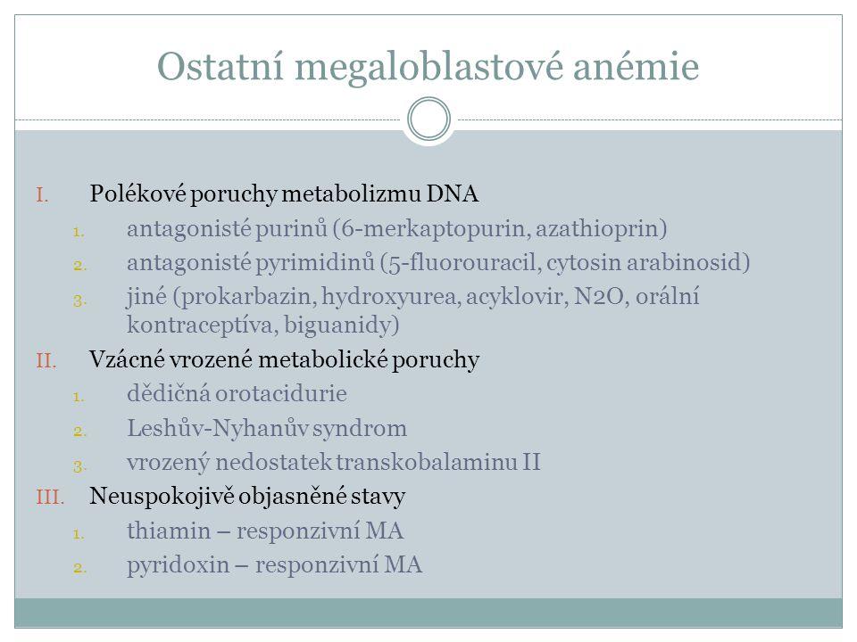 Ostatní megaloblastové anémie