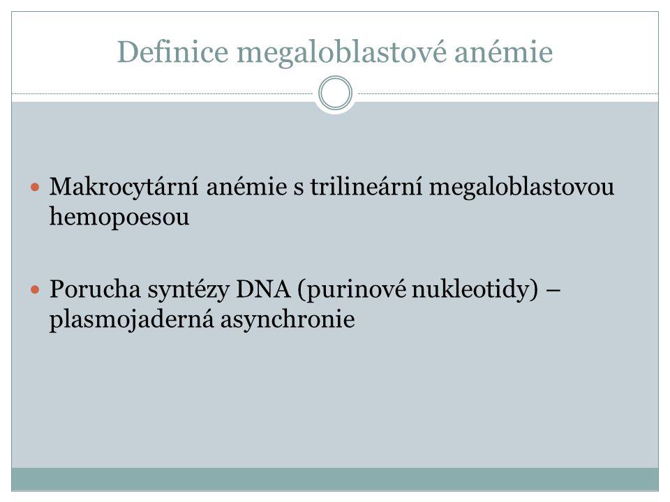 Definice megaloblastové anémie