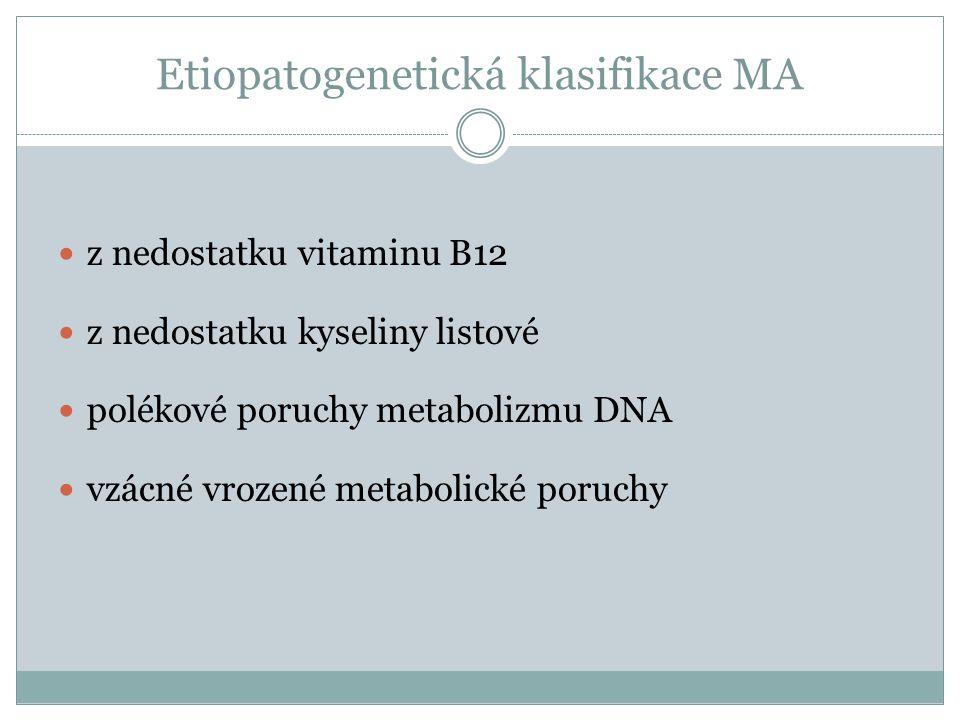 Etiopatogenetická klasifikace MA