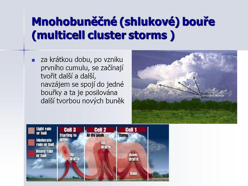 Mnohobuněčné (shlukové) bouře (multicell cluster storms )