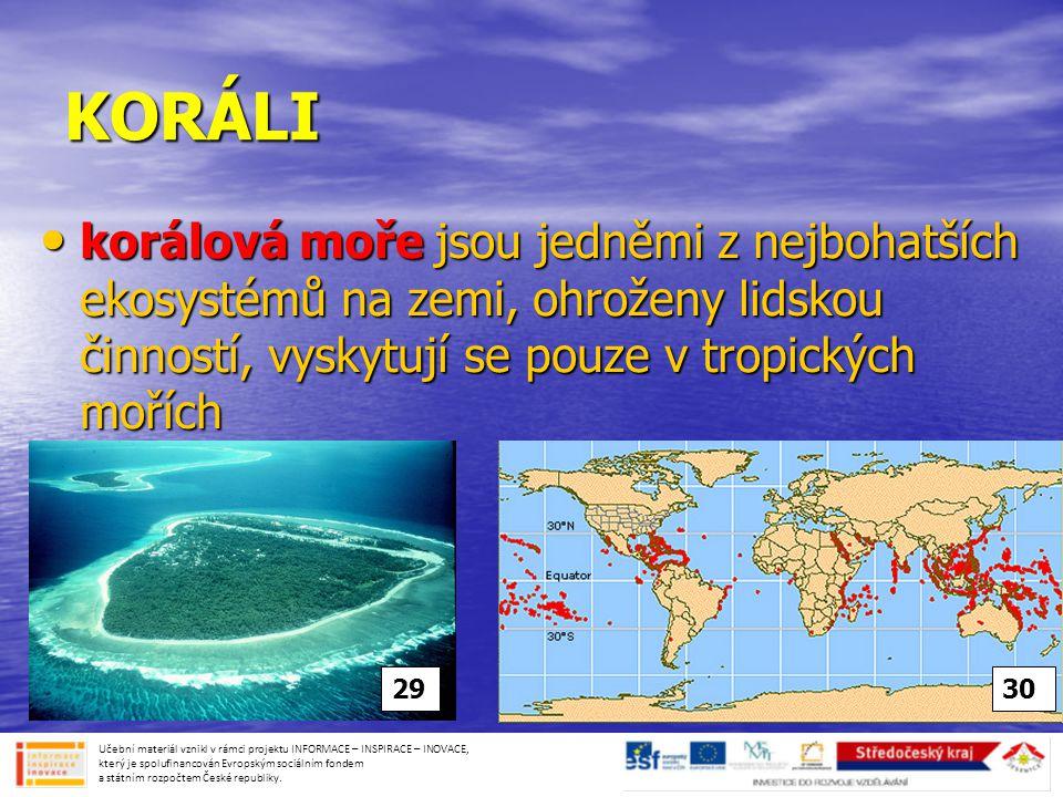 KORÁLI korálová moře jsou jedněmi z nejbohatších ekosystémů na zemi, ohroženy lidskou činností, vyskytují se pouze v tropických mořích.