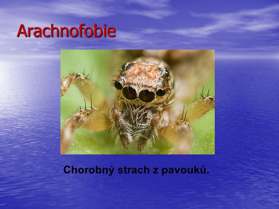 Arachnofobie Chorobný strach z pavouků.