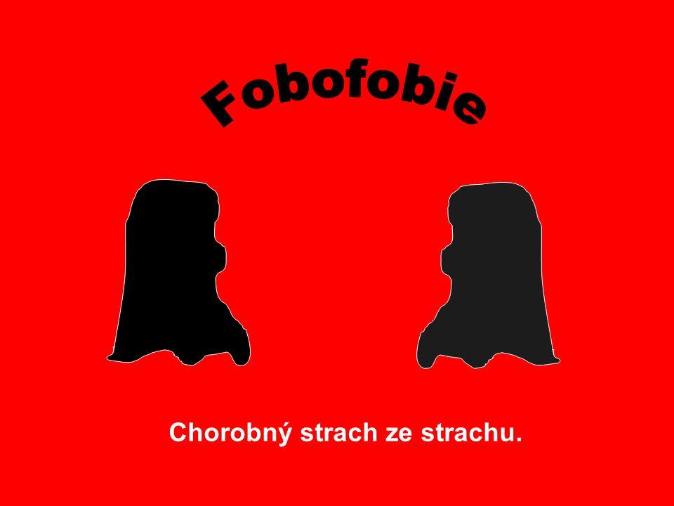 Fobofobie Chorobný strach ze strachu.