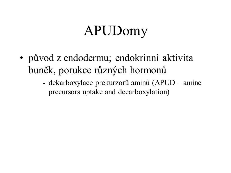 APUDomy původ z endodermu; endokrinní aktivita buněk, porukce různých hormonů.