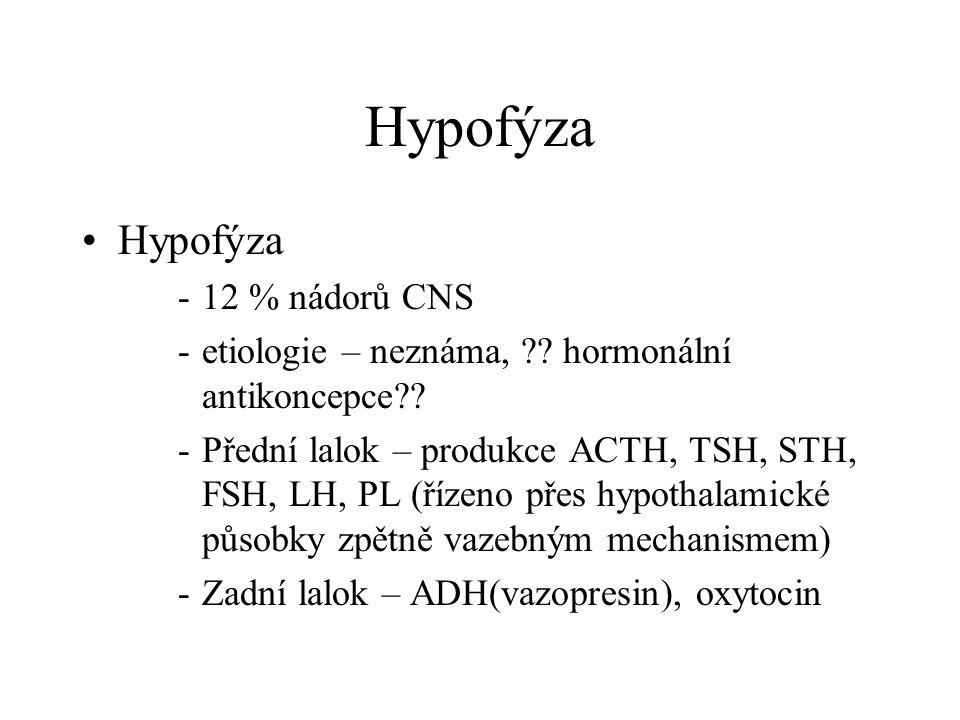 Hypofýza Hypofýza 12 % nádorů CNS