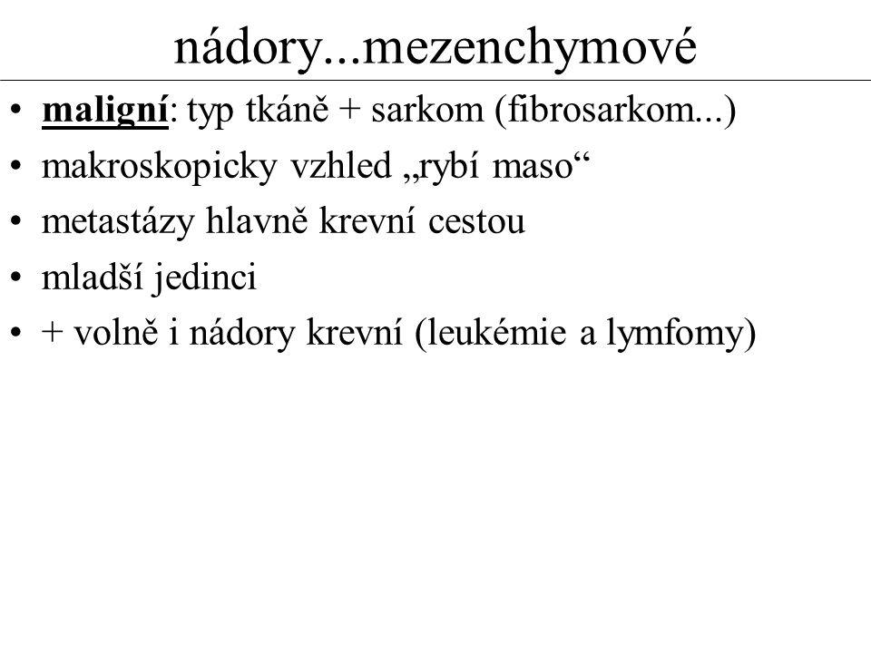 nádory...mezenchymové maligní: typ tkáně + sarkom (fibrosarkom...)