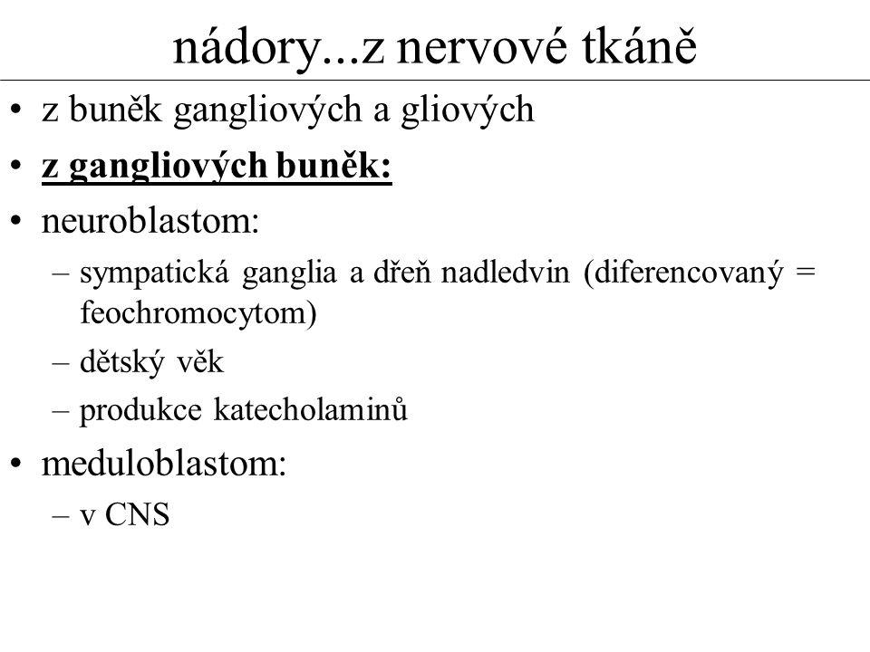 nádory...z nervové tkáně z buněk gangliových a gliových