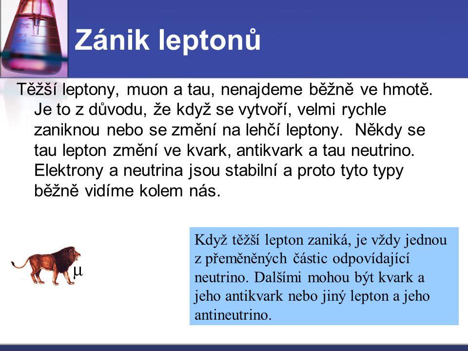 Zánik leptonů
