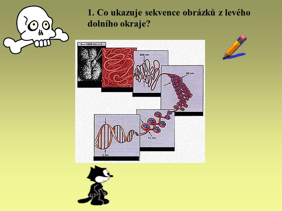 1. Co ukazuje sekvence obrázků z levého dolního okraje