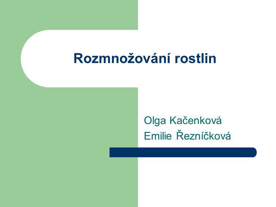 Olga Kačenková Emilie Řezníčková