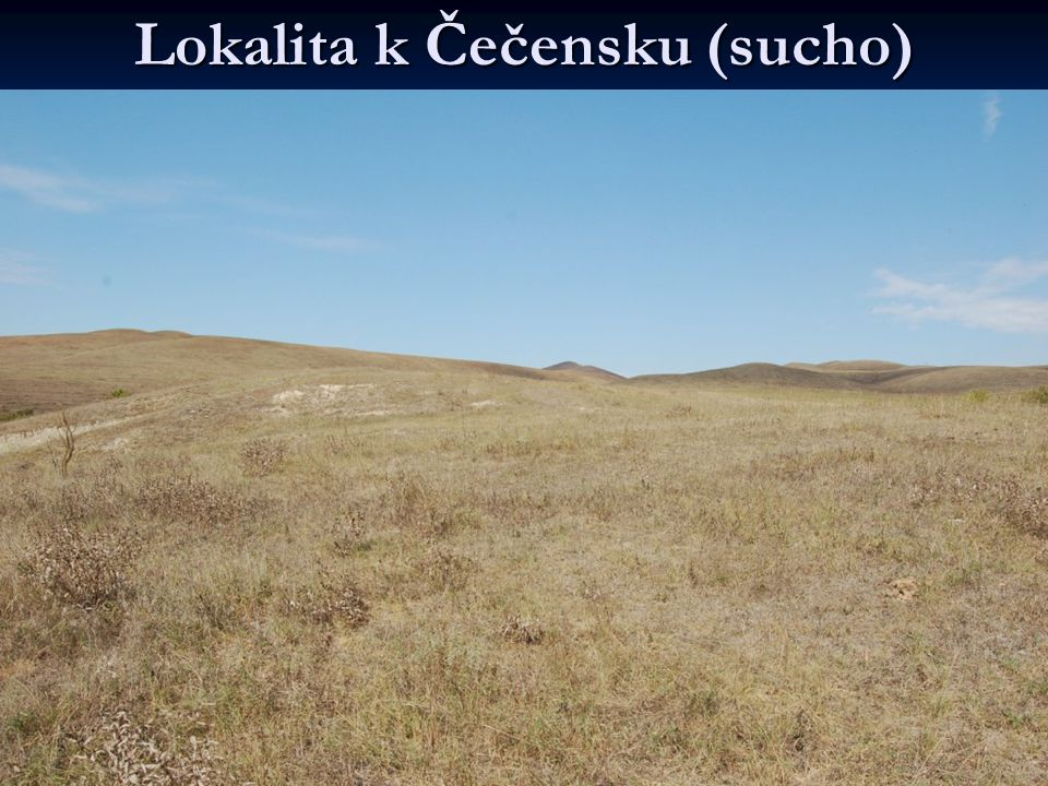Lokalita k Čečensku (sucho)