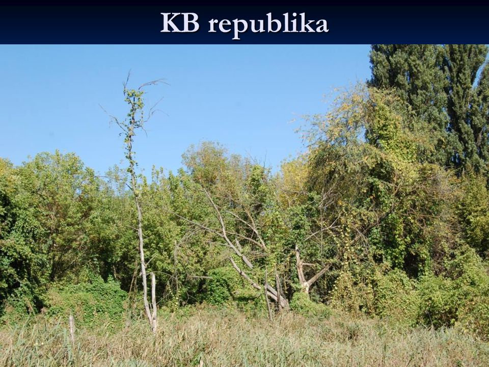 KB republika