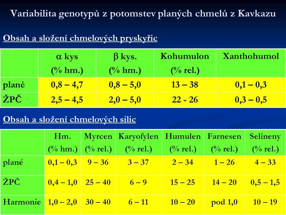 Variabilita genotypů z potomstev planých chmelů z Kavkazu