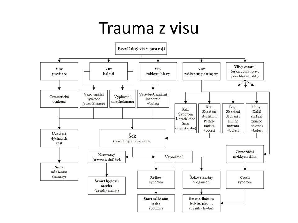 Trauma z visu