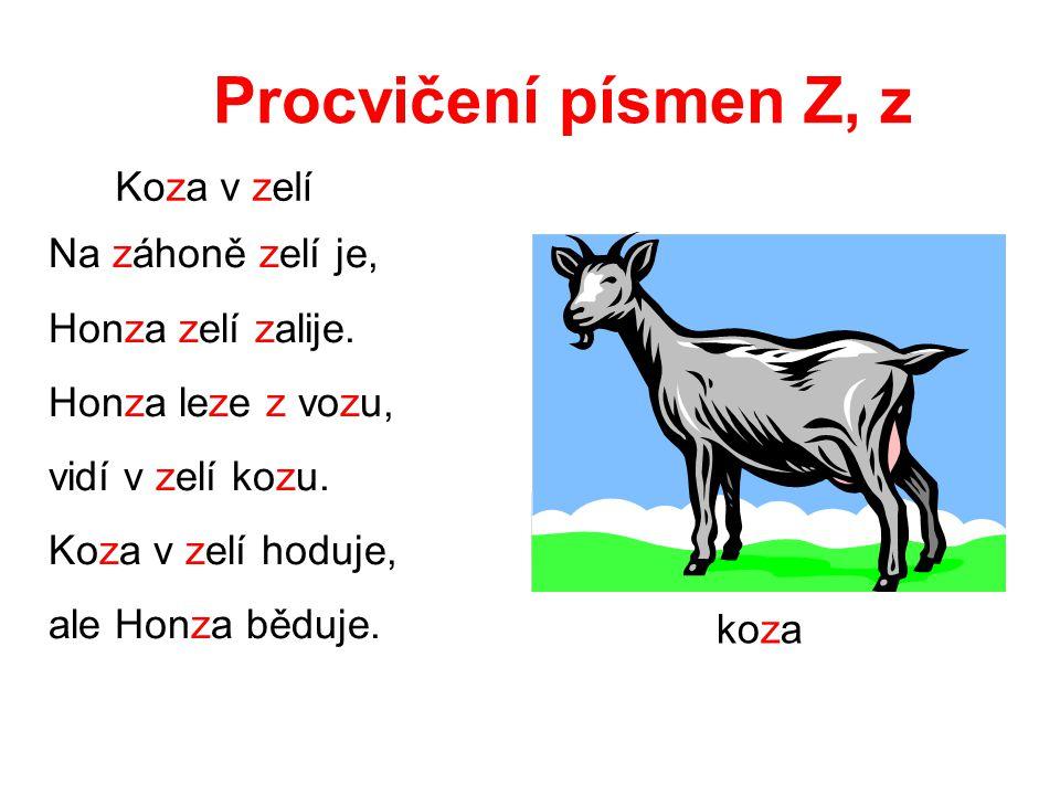 Procvičení písmen Z, z Koza v zelí Na záhoně zelí je,