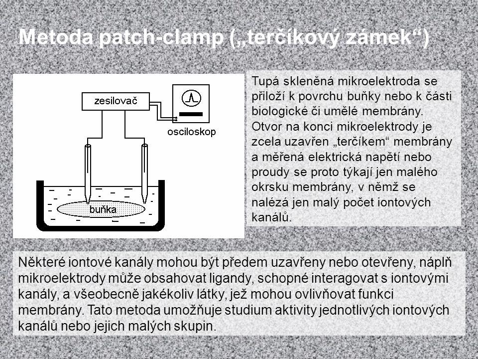 """Metoda patch-clamp (""""terčíkový zámek )"""