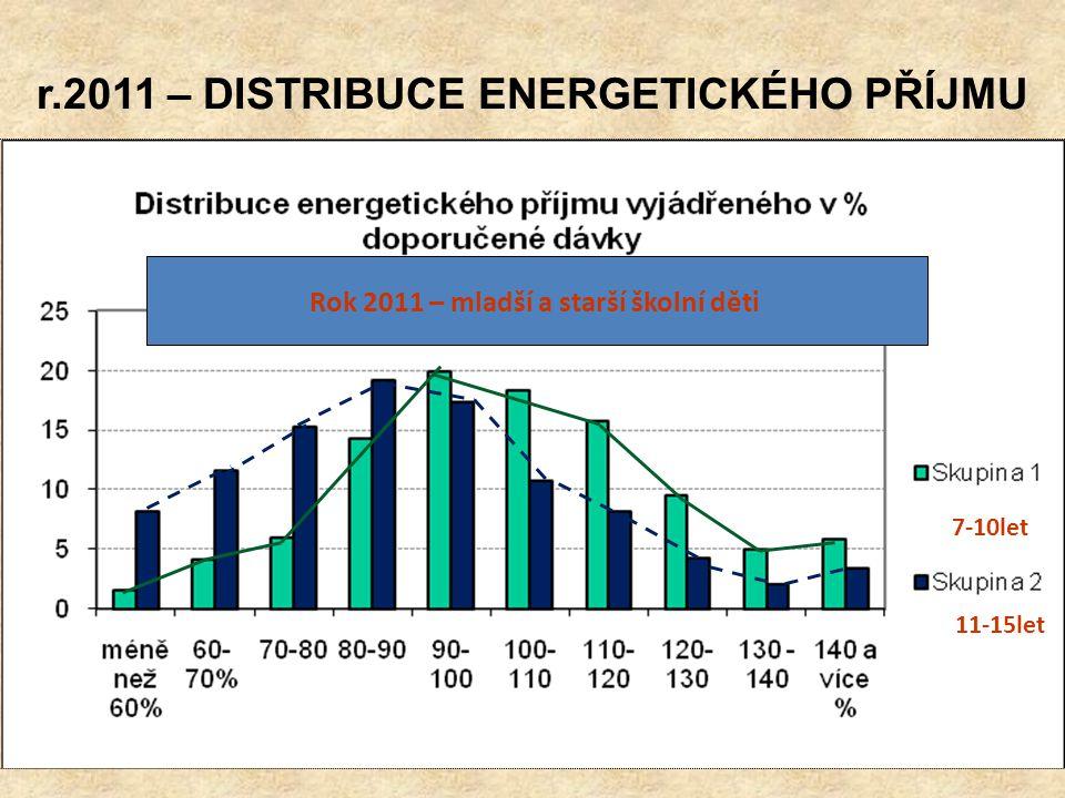 r.2011 – DISTRIBUCE ENERGETICKÉHO PŘÍJMU