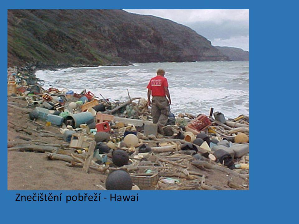 Znečištění pobřeží - Hawai