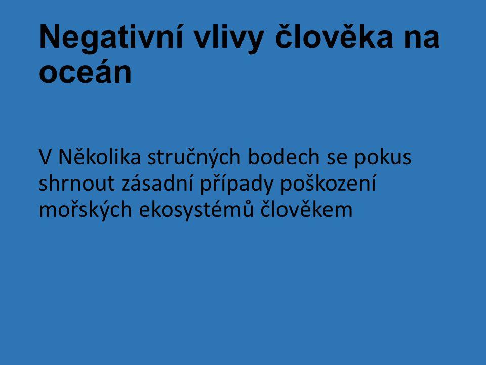 Negativní vlivy člověka na oceán