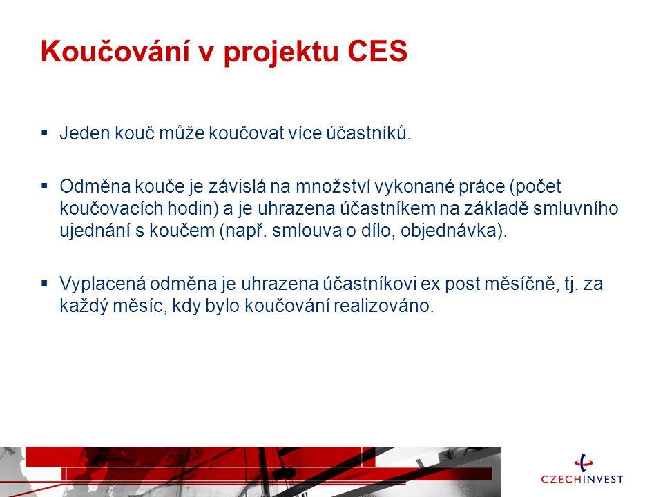 Koučování v projektu CES