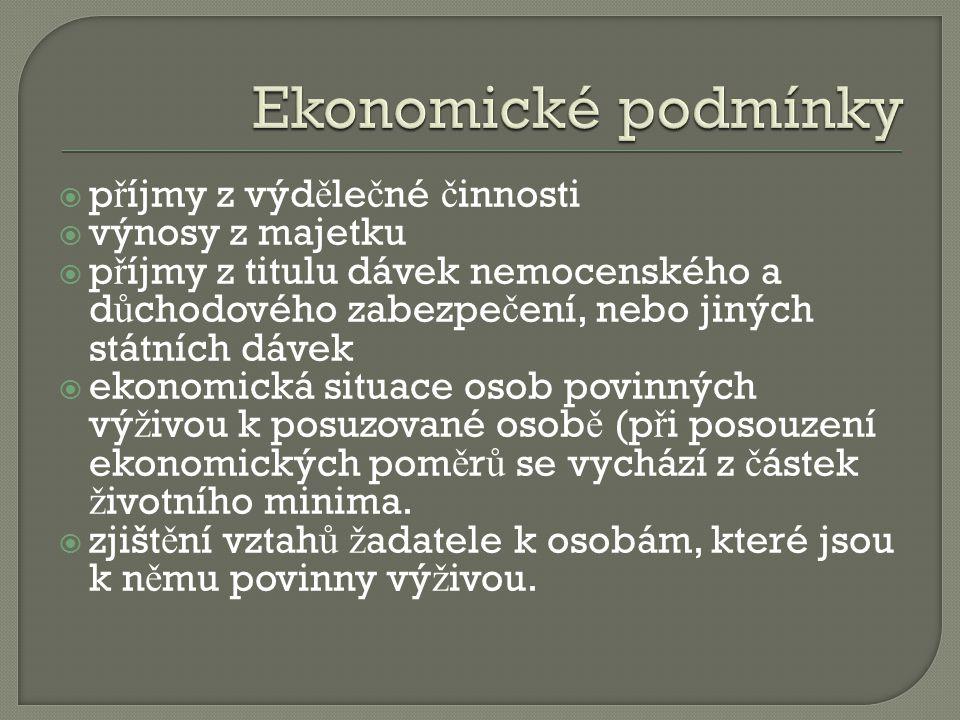 Ekonomické podmínky příjmy z výdělečné činnosti výnosy z majetku