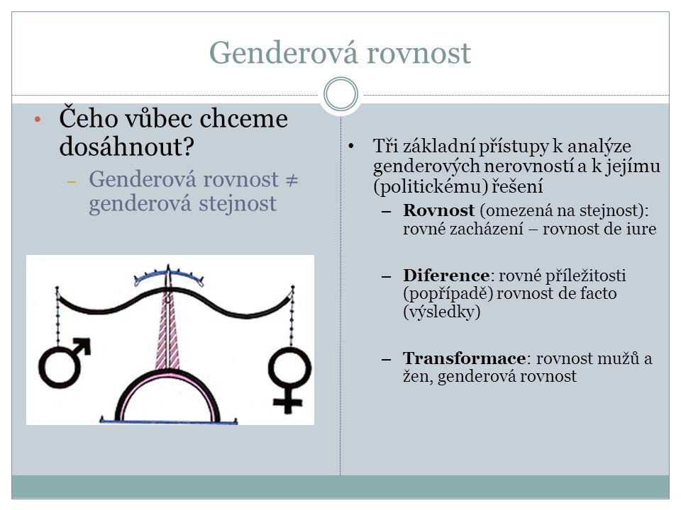 Genderová rovnost Čeho vůbec chceme dosáhnout