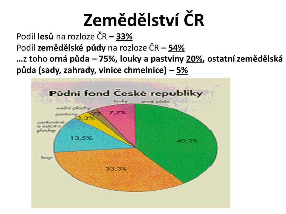 Zemědělství ČR Podíl lesů na rozloze ČR – 33%